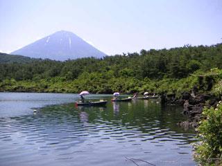 富士五湖エリアへのお出かけに最適なきっぷ