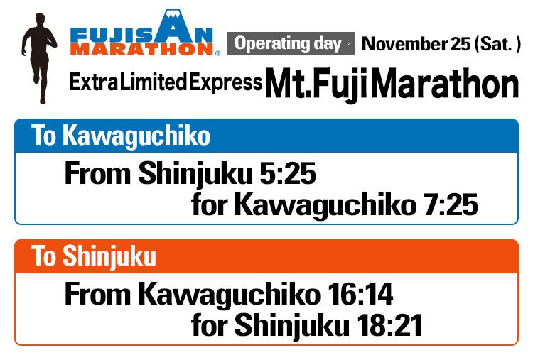 Extra Limited Express Mt.Fuji Marathon